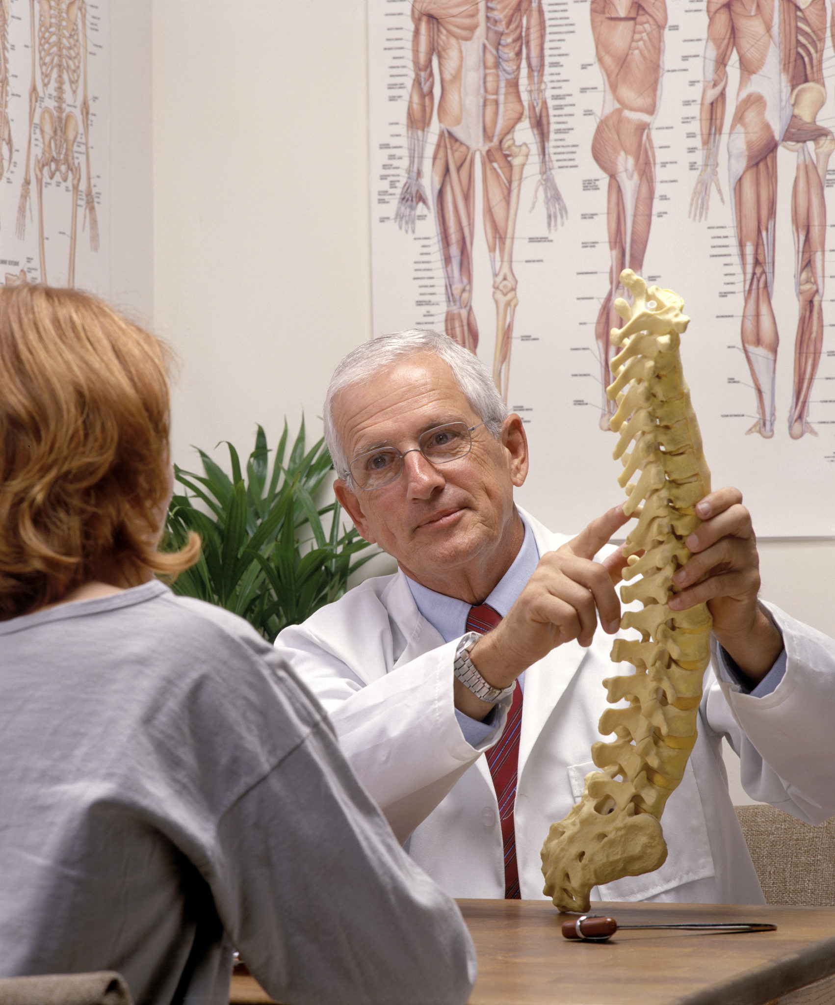 Find a Chiropractor for Your Pregnancy in Pelham NY